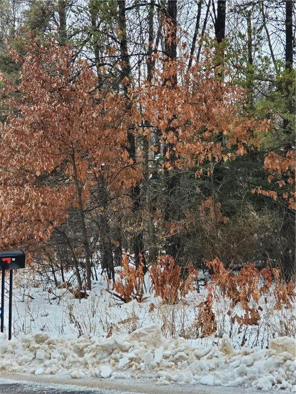 Lot 3 Pinewood Avenue, Chetek, WI 54728 (MLS #1549899) :: RE/MAX Affiliates