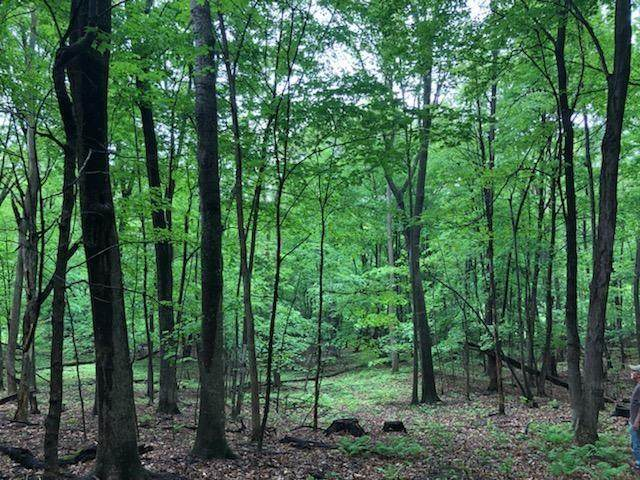 Lot 2 732nd Ave, Menomonie, WI 54751 (MLS #1550902) :: The Hergenrother Realty Group