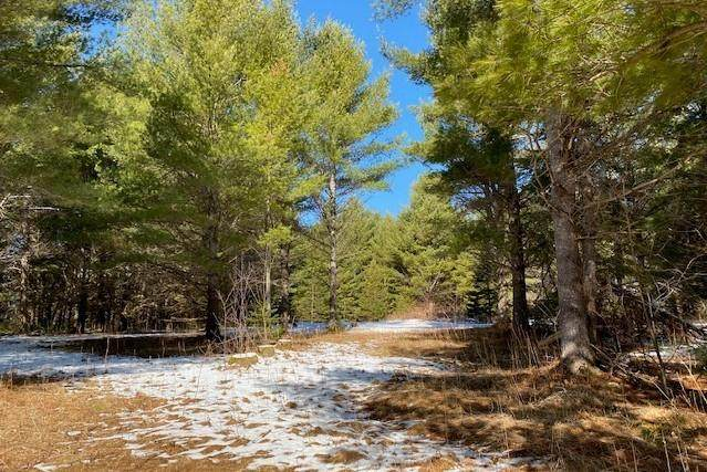 Lot 3 N Riverside Road, Cable, WI 54821 (MLS #1551796) :: RE/MAX Affiliates
