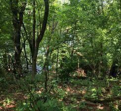 Lot 5 Eagle Point Road, Menomonie, WI 54751 (MLS #1555641) :: RE/MAX Affiliates