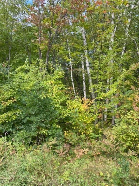 0 Rollingwood Road, Stone Lake, WI 54876 (MLS #1558317) :: RE/MAX Affiliates