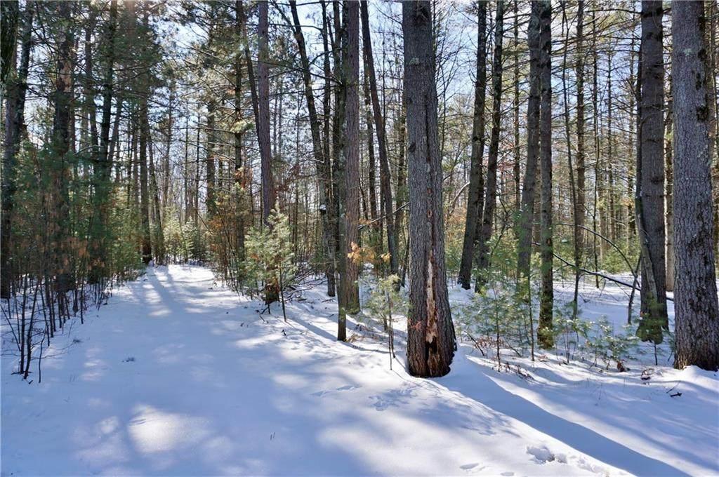 .98 Acres Fawn Lane - Photo 1