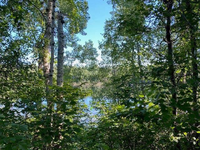 2510 Bony Lake Road, Solon Springs, WI 54873 (MLS #1544561) :: RE/MAX Affiliates