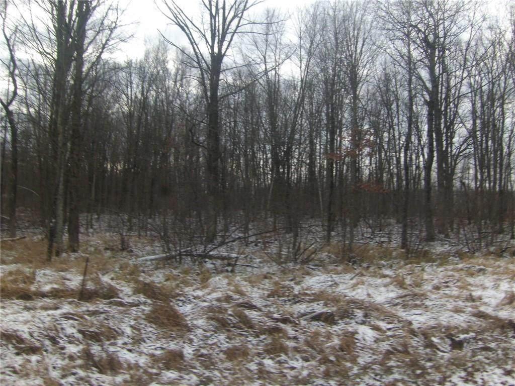 5 acres River Road - Photo 1