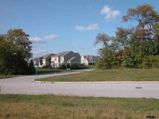 909 (Lot 127) Wetherburn Drive, York, PA 17404 (MLS #21702653) :: CENTURY 21 Core Partners