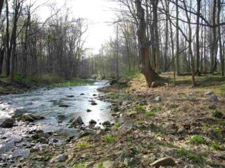 16 Creek View Tr, Carroll Valley, PA 17320 (MLS #21704093) :: CENTURY 21 Core Partners