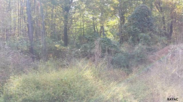 Lot 5 & 6 Sour Mash, Fairfield, PA 17320 (MLS #21709820) :: CENTURY 21 Core Partners