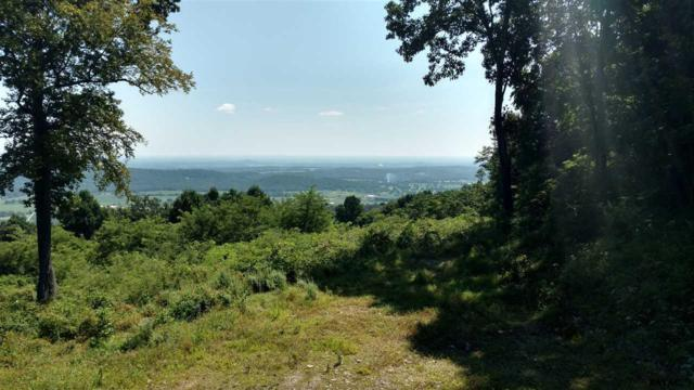 40 Haines Lane Lot 2, Fairfield, PA 17320 (MLS #21709954) :: CENTURY 21 Core Partners