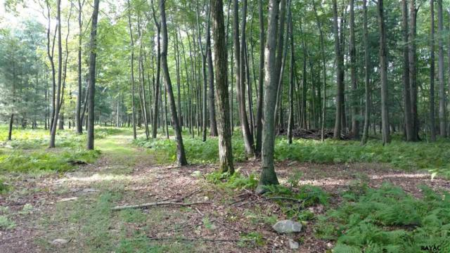 40 Haines Lane Lot 1, Fairfield, PA 17320 (MLS #21709955) :: CENTURY 21 Core Partners