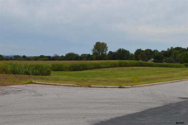 2583 (Lot 134) Hepplewhite Drive, York, PA 17404 (MLS #21710284) :: CENTURY 21 Core Partners