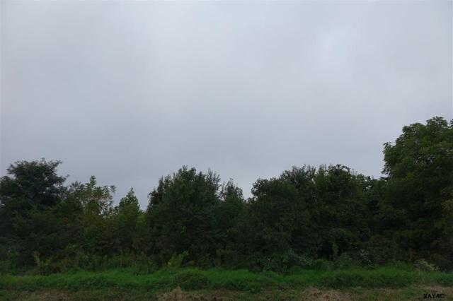 Lot 6 S Mountain Road, Dillsburg, PA 17019 (MLS #21710576) :: Teampete Realty Services, Inc