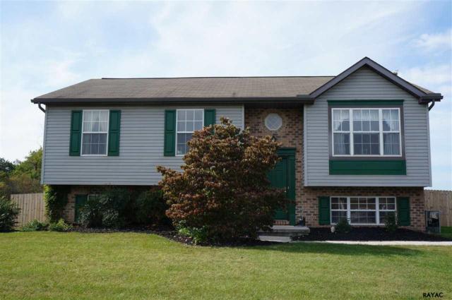 79 Dickinson Drive, Hanover, PA 17331 (MLS #21710994) :: CENTURY 21 Core Partners