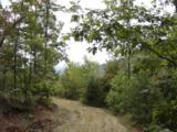 29 Mountain Lookout - Photo 6