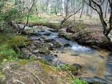 4221 Maple Creek Road - Photo 3