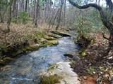 4221 Maple Creek Road - Photo 4
