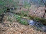 4221 Maple Creek Road - Photo 5