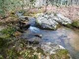 4221 Maple Creek Road - Photo 6