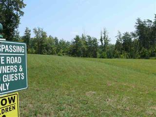 Lake Lure, NC 28746 :: Washburn Real Estate