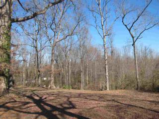 220 Dellinger Road, Shelby, NC 28152 (MLS #43163) :: Washburn Real Estate
