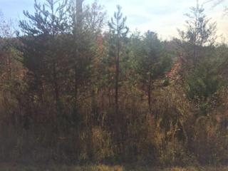 Lot 62 Cross Creek Drive, Rutherfordton, NC 28139 (MLS #44121) :: Washburn Real Estate