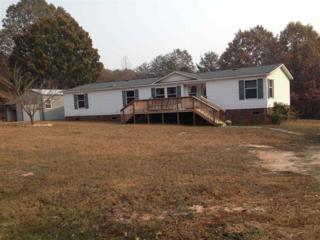 910 Elliott Road, Rutherfordton, NC 28139 (MLS #44137) :: Washburn Real Estate