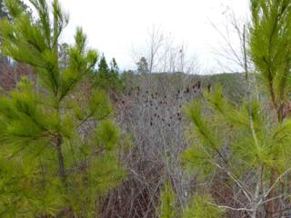 Lot 6 Black Rock Falls, Rutherfordton, NC 28139 (MLS #44207) :: Washburn Real Estate