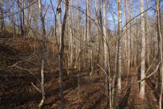 Lot 239 Clearwater Pkwy, Rutherfordton, NC 28139 (MLS #44274) :: Washburn Real Estate