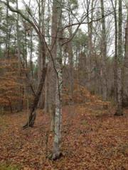 0 Bitteroot Circle, Rutherfordton, NC 28139 (MLS #44281) :: Washburn Real Estate