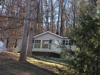 236 Island Creek, Lake Lure, NC 28746 (MLS #44313) :: Washburn Real Estate