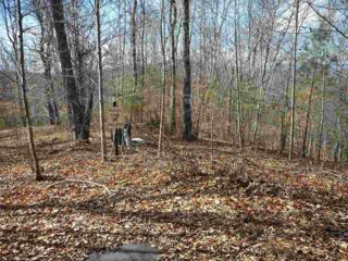 Lot 136 Cross Creek Drive, Rutherfordton, NC 28139 (MLS #44383) :: Washburn Real Estate