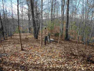 Lot 136A Cross Creek Drive, Rutherfordton, NC 28139 (MLS #44384) :: Washburn Real Estate