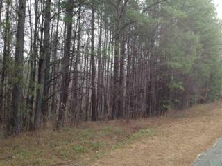 00 King Stepp, Mill Spring, NC 28756 (MLS #44420) :: Washburn Real Estate