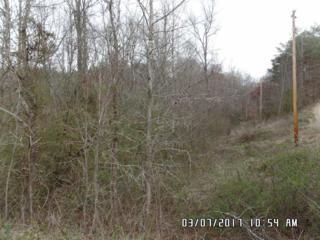 212 Deer Creek Rd, Casar, NC 28020 (MLS #44461) :: Washburn Real Estate