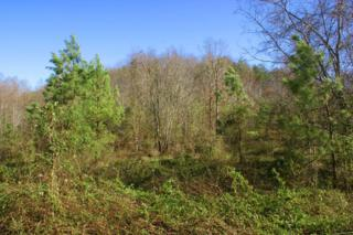 Lot 52 Cross Creek Dr, Rutherfordton, NC 28139 (MLS #44468) :: Washburn Real Estate