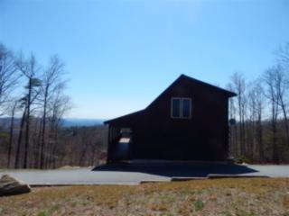 1182 Arbra Mountain Way, Bostic, NC 28018 (MLS #44475) :: Washburn Real Estate