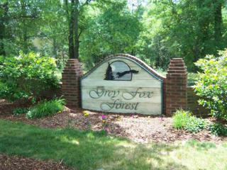 1301 Moonshadow Lane, Shelby, NC 28150 (MLS #43382) :: Washburn Real Estate