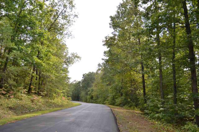 000 Shepherds Creek Cir, Rutherfordton, NC 28139 (#43986) :: Robert Greene Real Estate, Inc.