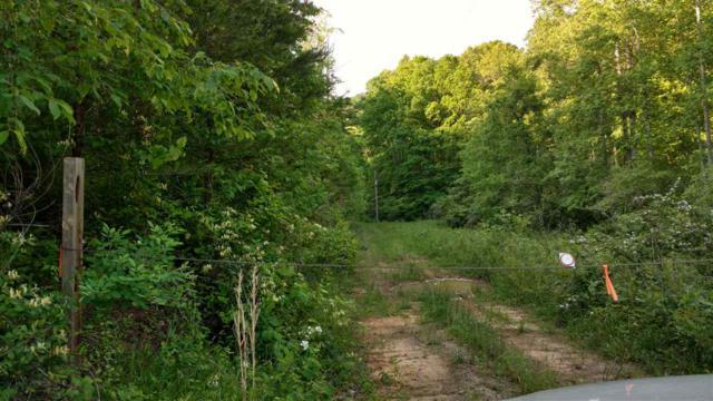 00 Lazy Acres Lane, Lake Lure, NC 28746 (MLS #44820) :: Washburn Real Estate