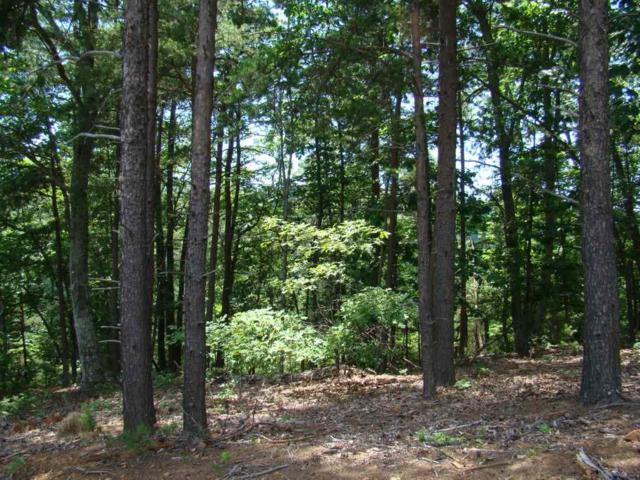 52 E Spur Ridge, Bostic, NC 28018 (MLS #45902) :: RE/MAX Journey