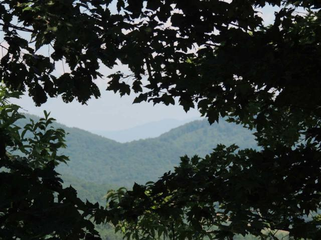 Mountain Lookout Dr., Bostic, NC 28018 (#45903) :: Robert Greene Real Estate, Inc.