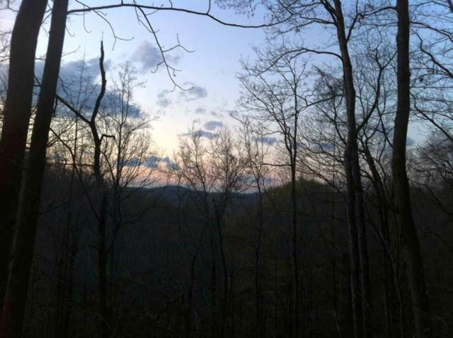 Lot 16 Mountain Forest Drive, Union Mills, NC 28167 (#46311) :: Robert Greene Real Estate, Inc.