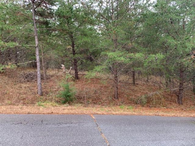 00 Lily Mae Drive #Lot 16, Rutherfordton, NC 28139 (MLS #46446) :: RE/MAX Journey