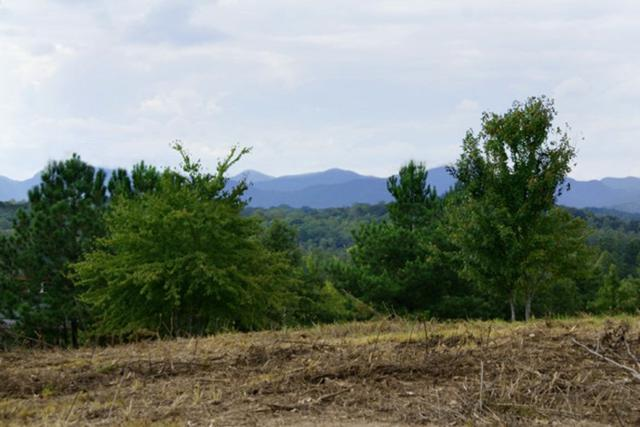 (Lot 107) Casselberry Ct, Union Mills, NC 28167 (MLS #46602) :: RE/MAX Journey