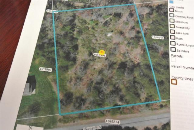 South Quail Lane, Forest City, NC 28043 (#46675) :: Robert Greene Real Estate, Inc.