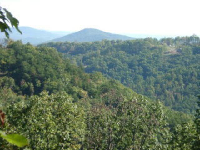 66 Fall Creek Drive, Bostic, NC 28018 (MLS #46876) :: RE/MAX Journey