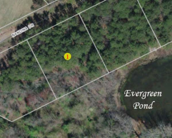 1645543 Nandina Dr, Forest City, NC 28043 (MLS #46883) :: RE/MAX Journey