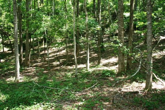 000 Polk County Line Road, Rutherfordton, NC 28139 (#47082) :: Robert Greene Real Estate, Inc.