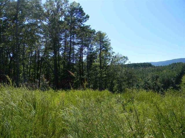 Lot 1 and 47 Silver Creek Road, Mill Spring, NC 28756 (#47185) :: Robert Greene Real Estate, Inc.