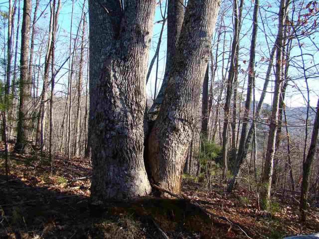 89 Adirondack Ln, Bostic, NC 28018 (MLS #47248) :: RE/MAX Journey