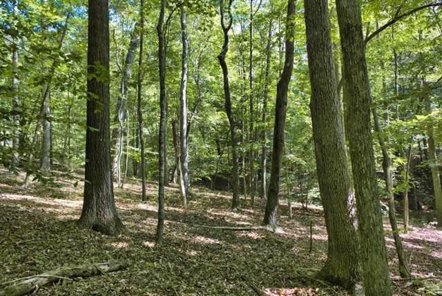 0 Cinnamon Ridge, Rutherfordton, NC 28139 (#47280) :: Robert Greene Real Estate, Inc.